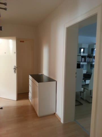 Sehr zentr. ruh. Wohnung m. Balkon im Woogsviertel - Darmstadt - Wohnung