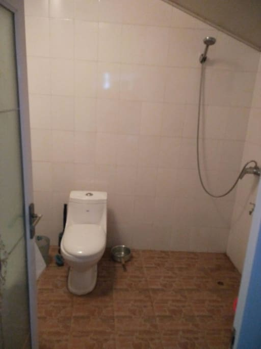Clean Western toilet.