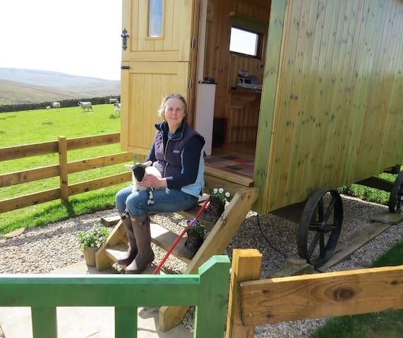 Pry House Farm Hut-in-the-Hills Shepherd's Hut - Keld - Καλύβα