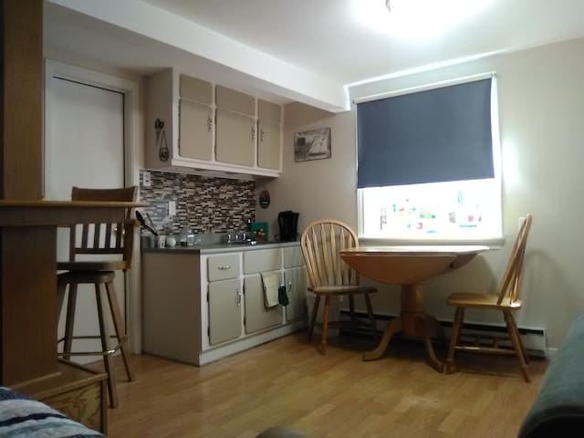 Kitchen with microwave, small fridge and two burner hot plate