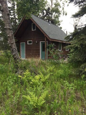 Northwoods Cabin - Kenai