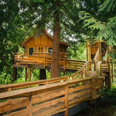 Treehouses In Seattle - Group guys build epic treehouse gaming