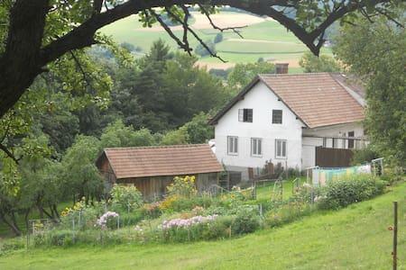 Wohnen im Grünen - Ungerbach - Flat