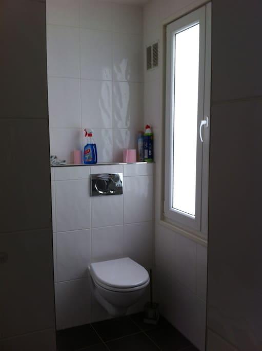 salle de bain douche, lavabo et toilettes