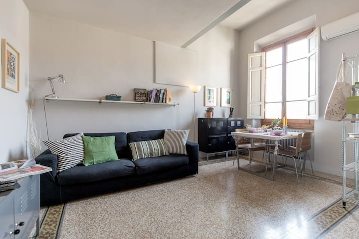 Sunny top floor in San Frediano