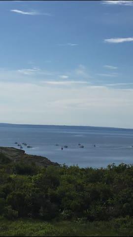 Cabin ...Spectacular ocean view