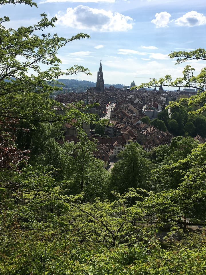 Only a short walk to the bear pit and the centre of Bern.