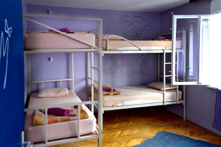 Mickey Mouse - 5 bed dorm