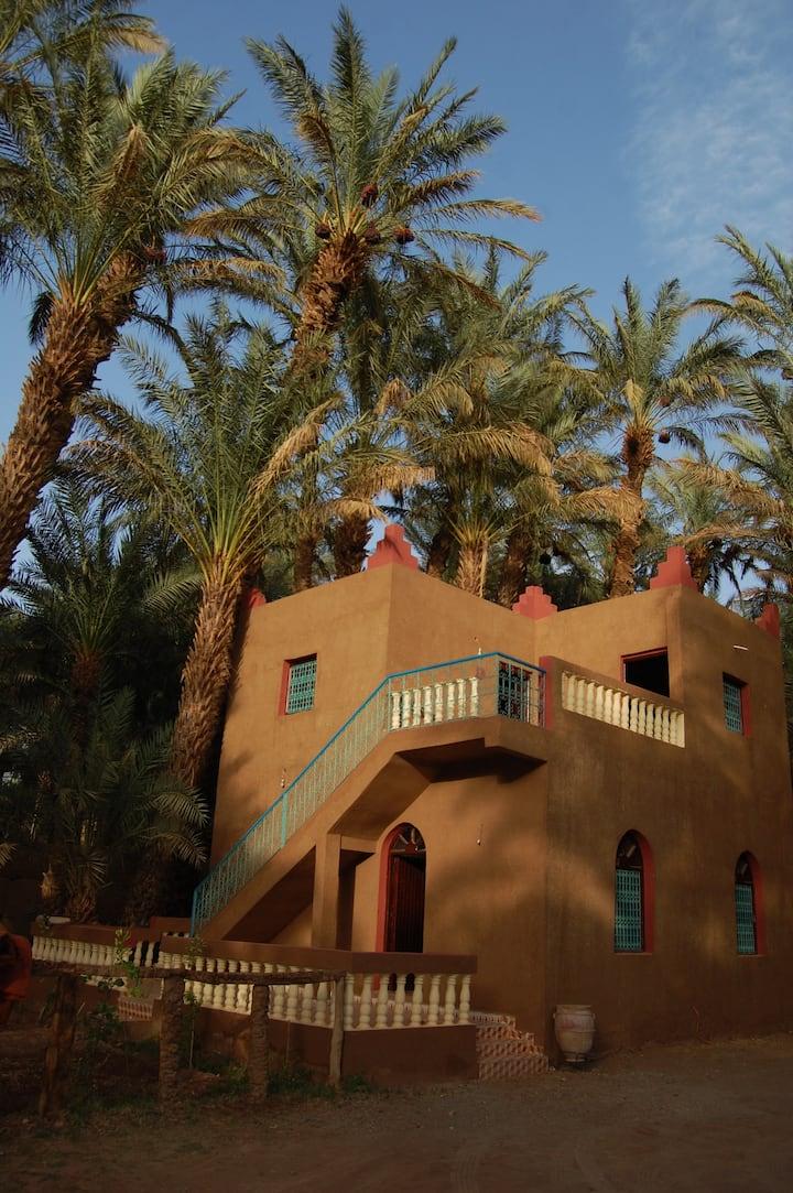 maison en plein oasis
