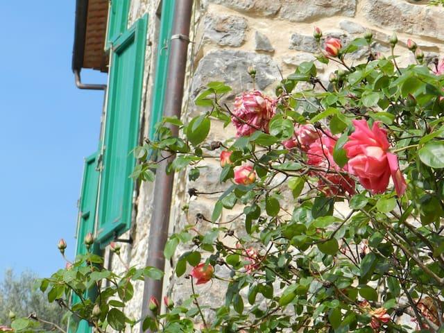 """""""Il Piastraio"""" con terrazza - Borgo A Mozzano - Lägenhet"""