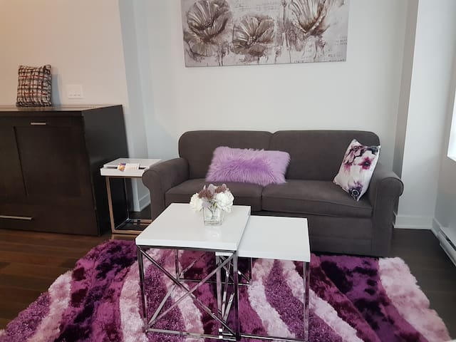 Fully furnished luxurious studio downtown MTL