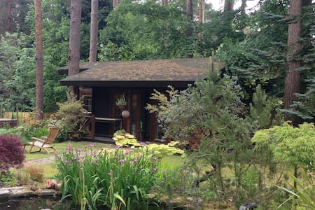 Garden cabin - sleeps 2. - Ascot - Zomerhuis/Cottage