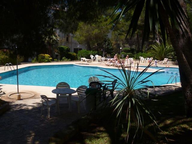 Schönes Zimmer mit eigenem Bad - Sol de Mallorca - Dům