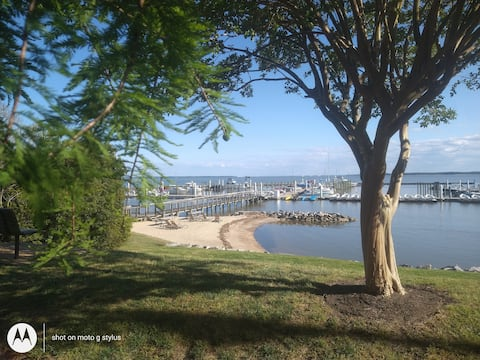 Lovely large suite on lake, walk to Beach