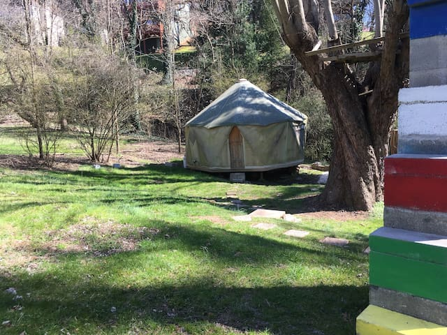Yurt Glamping in downtown Asheville!