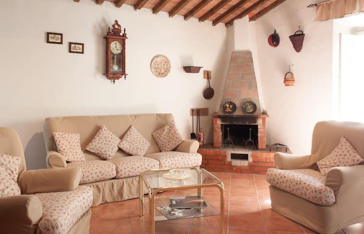 """Guest House """"La Collinetta"""" - Castellina Marittima - Apartment"""
