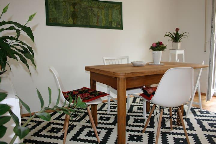 Zimmer in zentraler Wohnung in RV - Равенсбург - Квартира