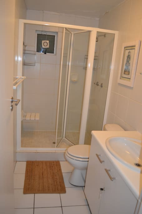 Large shower with seat, basin and toilet.