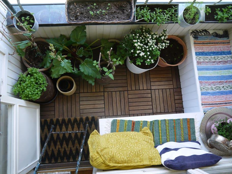 Spacious bright cosy bohemic wohnungen zur miete in Sun garden riesling