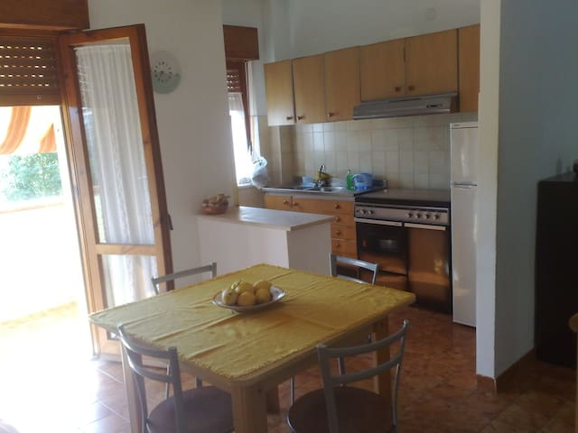 Holiday House The Summer - Santa Maria del Cedro - Apartment