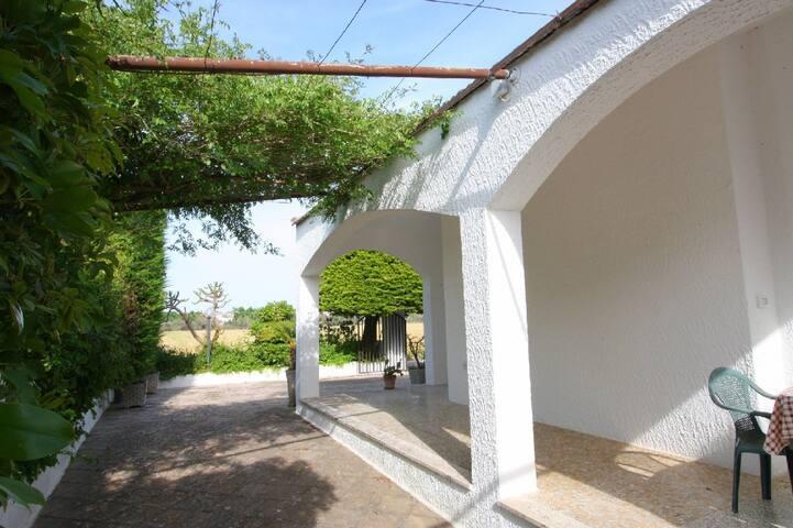 Villetta in vigneto - privacy - Matino - Villa