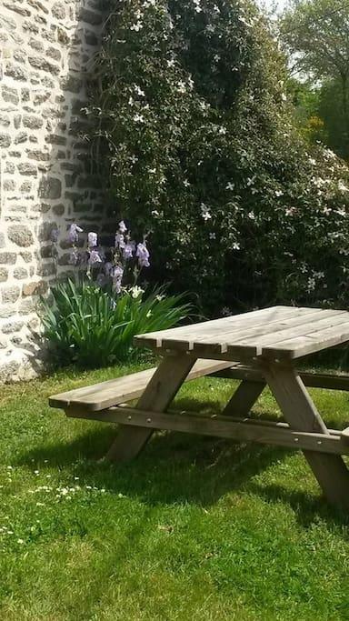 Les Iris au printemps
