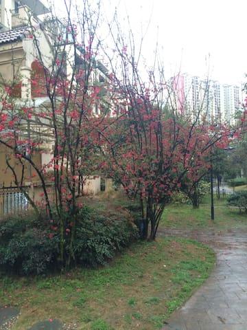 西南石油大学旁的舒适小屋 - Chengdu - Casa