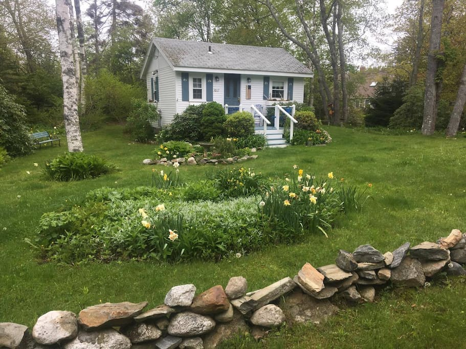 The cottage in spring time