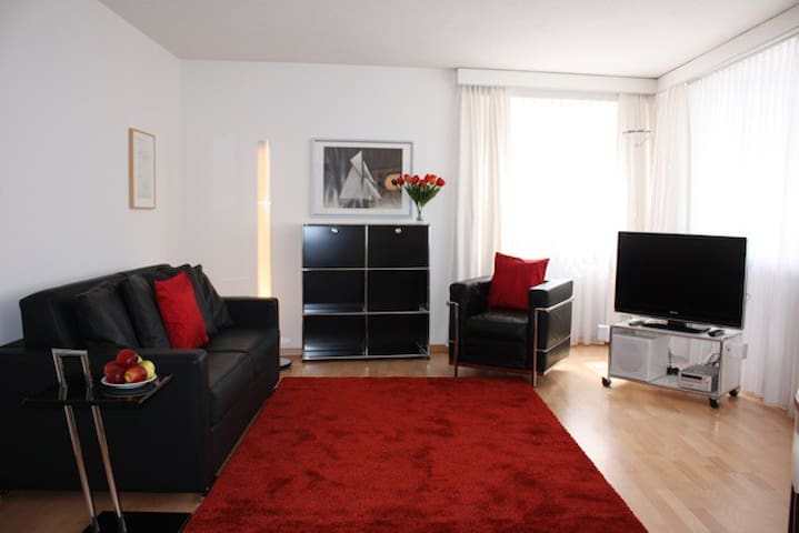 Great 1BR flat in old town (SCHWN) - Zürih - Daire