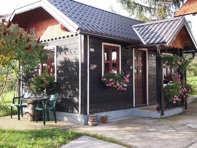 House Ilija Hodak - Studio - Plitvička Jezera - House