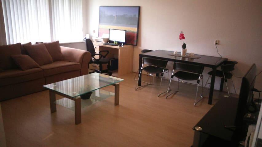 Centrico apartamento en Schiedam - Schiedam