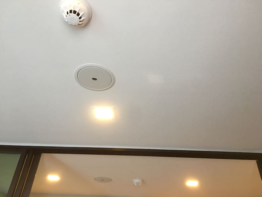 Smoke Detector and Bluetooth speaker