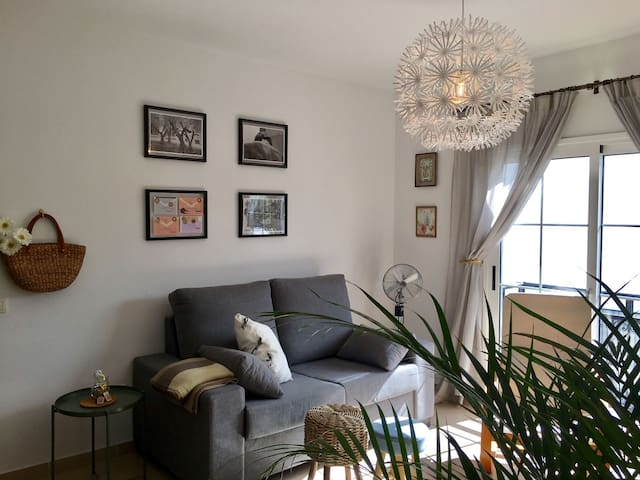 Very bright apartment in the center of the city