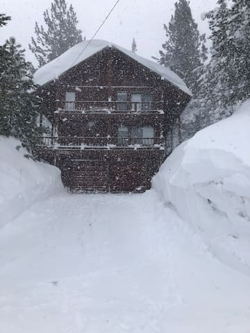 Winter brings lots of snow!