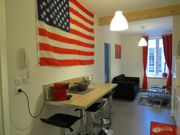 "Apartment ""AMERICAN"" - heart of city in Metz"