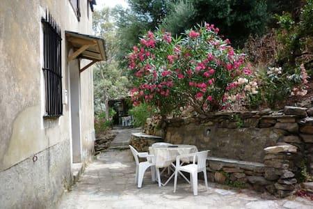 maison de village à la pointe du cap corse - Ersa