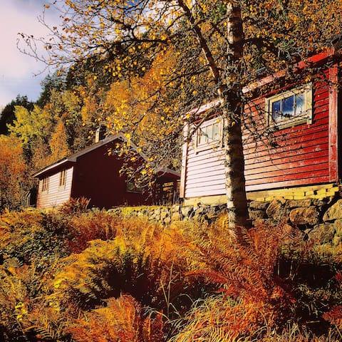 Nydelig hytte nær Trolltunga og Hardanger - Skare - Mökki