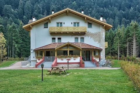 Genzianella Molveno in the Dolomiti-Gio&Rosy