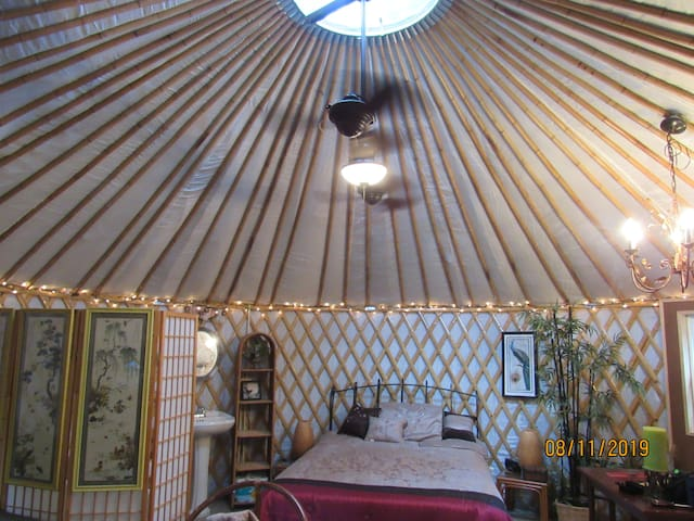 Yurting on the Canoochee River  Yurt