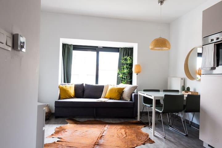 Cozy 1BR Apartment in the Heart of Antwerp