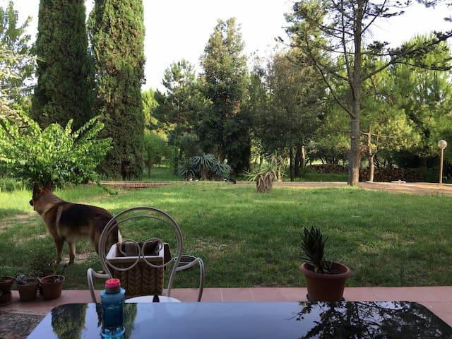 Paradiso a Villa Adriana - Loreto - Willa