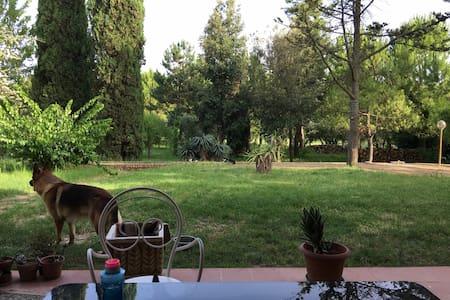 Paradiso a Villa Adriana - Loreto