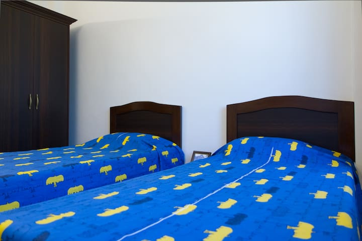 Centrally Located 1 bdrm apartment in Panjim - Panjim