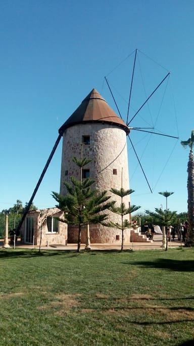 Molino vivienda - Windmill house