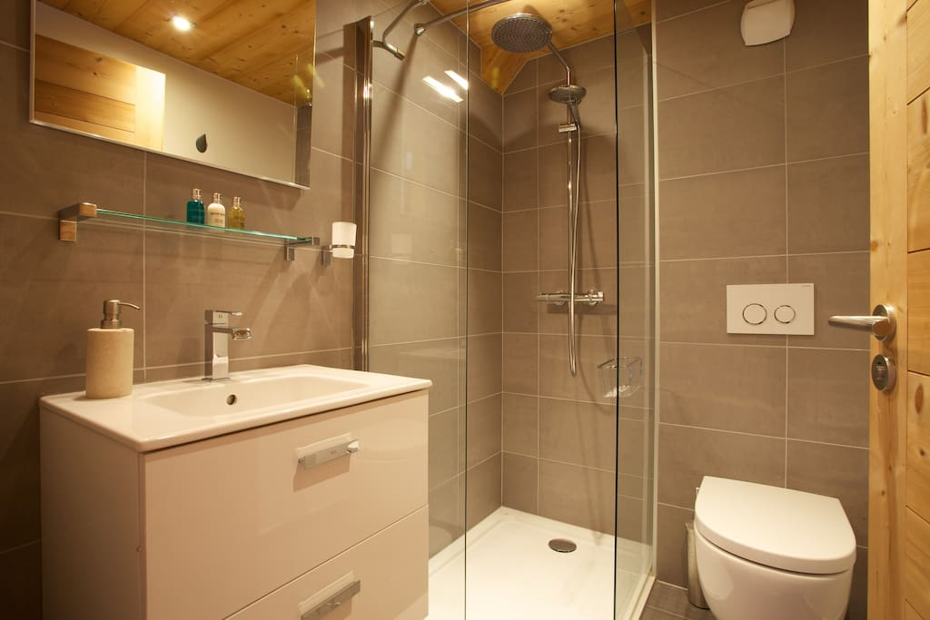 Ensuite shower room with rain shower