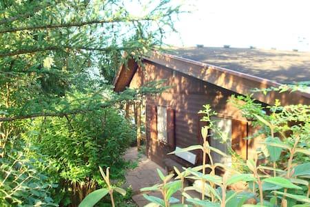 Kunterbunte Villa - Murrhardt - Blockhütte