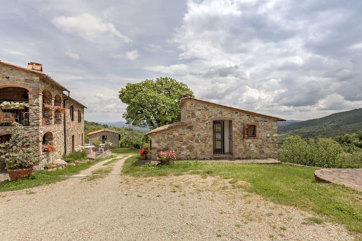 Bauenrhaus Rachele - Haus Ghiandaia - Montieri - Flat
