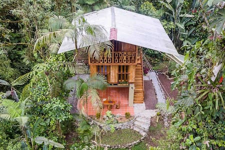 EcoLux Modern TreeHouse Cloudforest Hideaway