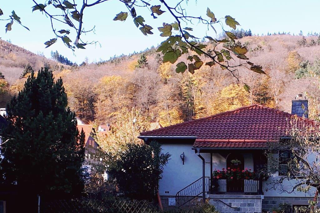 Blick auf die Harzberge