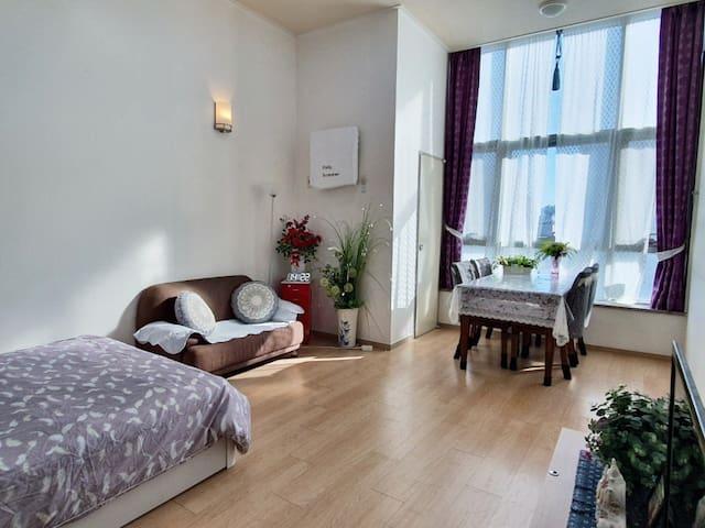 Lee apartment (#2, 66m2 size)